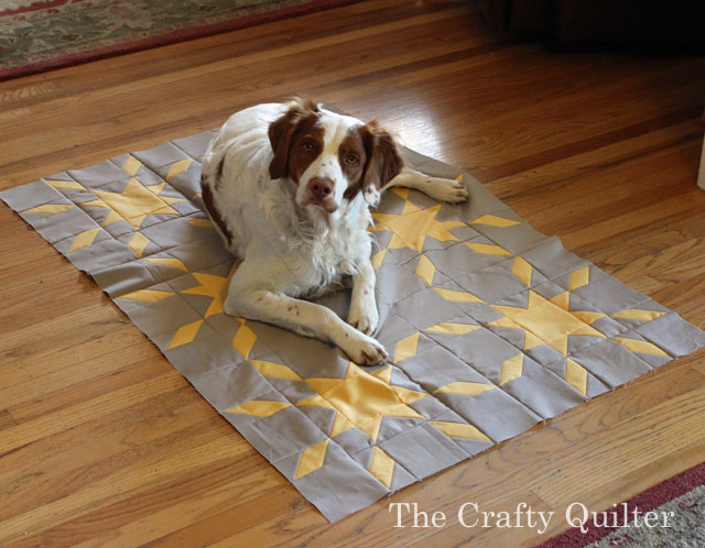 cooper and quilt copy