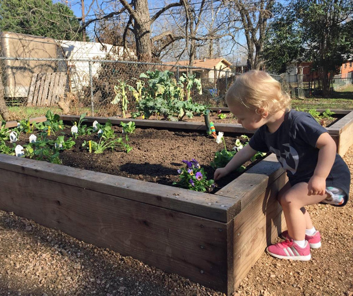Amelia tending the garden in Austin, Texas.