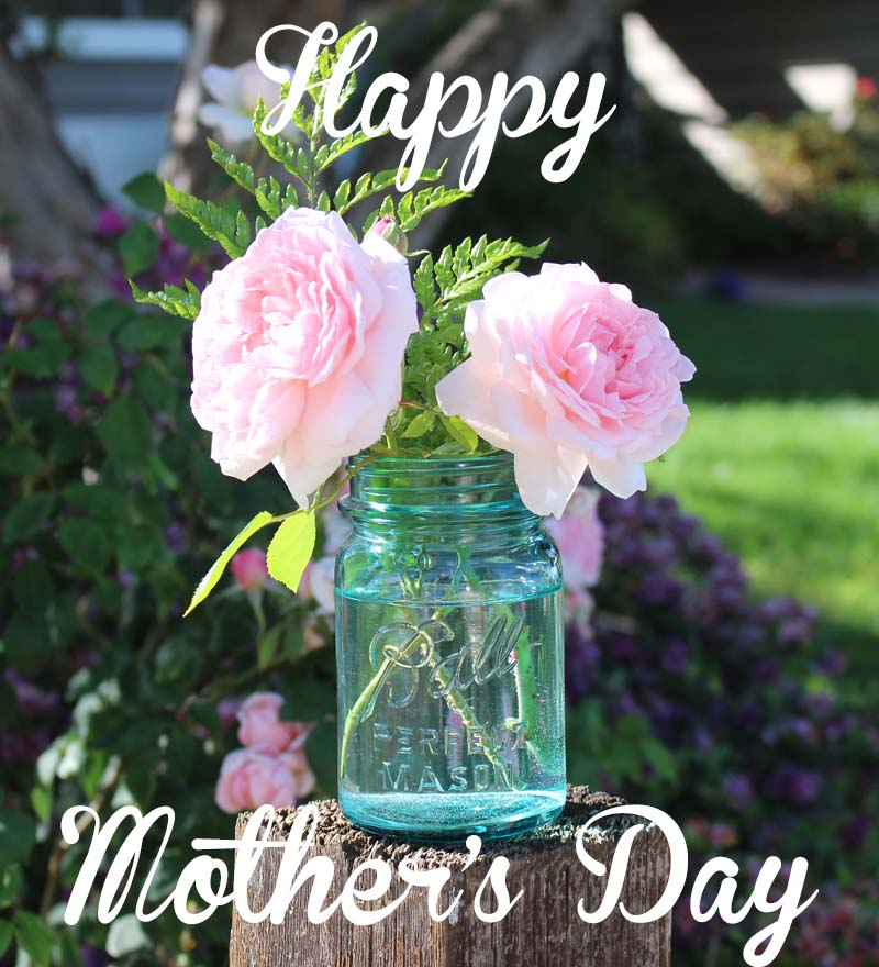 Happy Mother's Day from Julie Cefalu @ The Crafty Quilter