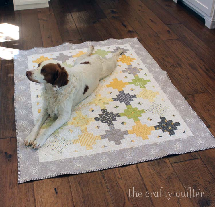 Bee Hive Quilt made by Julie Cefalu. Pattern available from Fat Quarter Shop